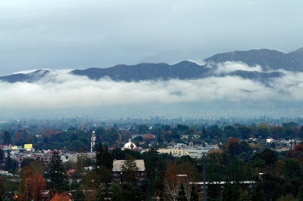 winter_clouds_2011-11-19_16-32-27_1©MaggieLynch2011.jpg