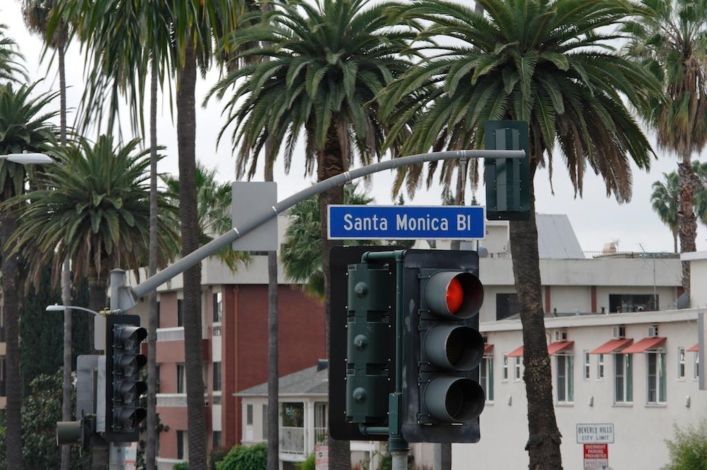 Hollywood bus ride_2011-03-06_01-02-22__SAM3373_©MaggieLynch2011.jpg