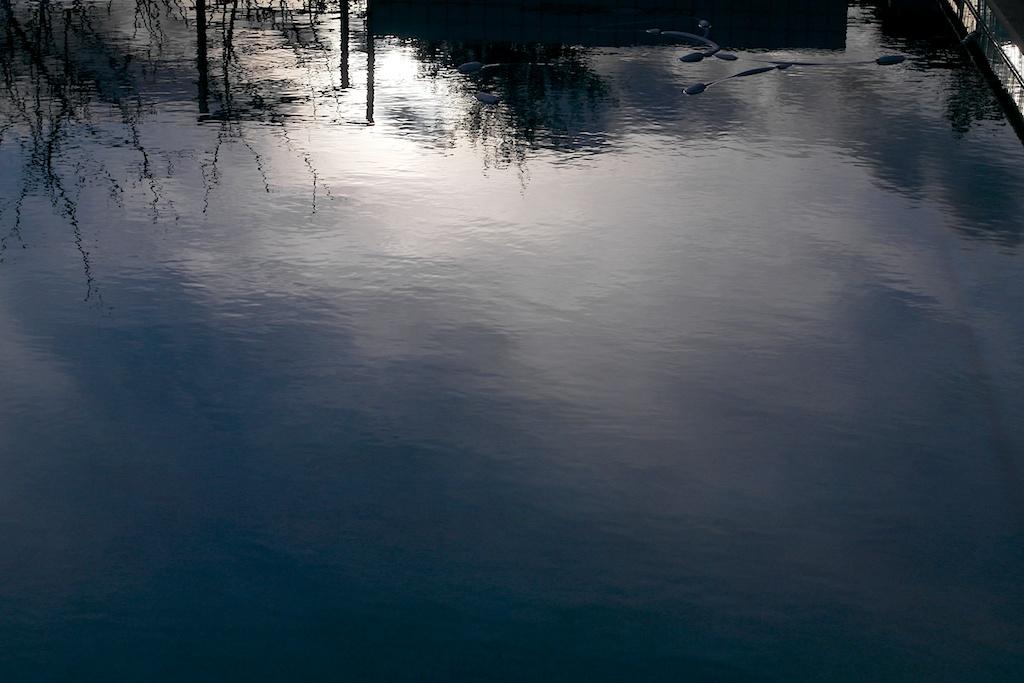 pool_reflection_2014-02-04_19-47-50_1 of 5©MaggieLynch2014.jpg
