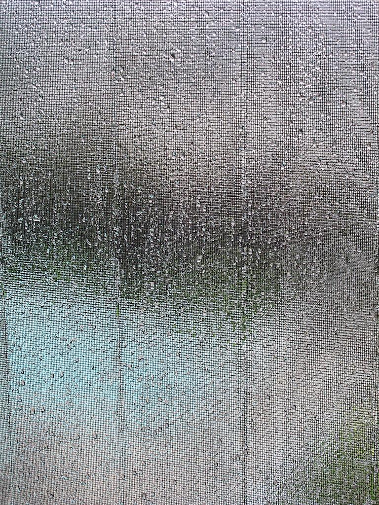 Rainy_screens.jpg