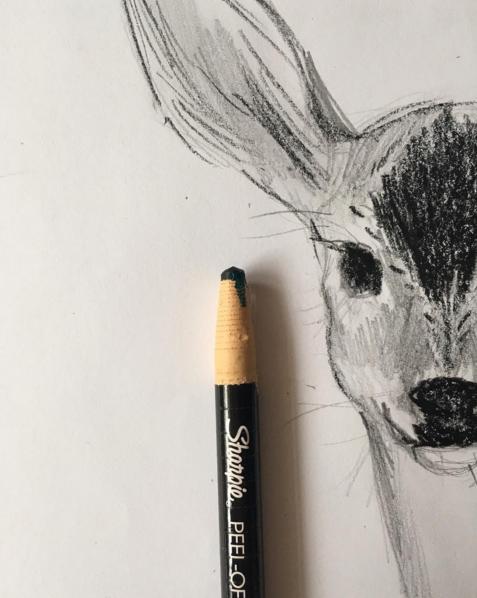 Julia Denos Deer