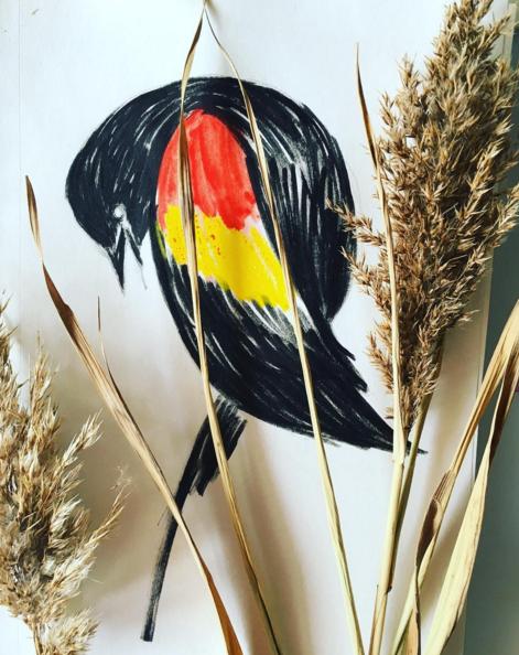 Julia Denos Red Winged Blackbird