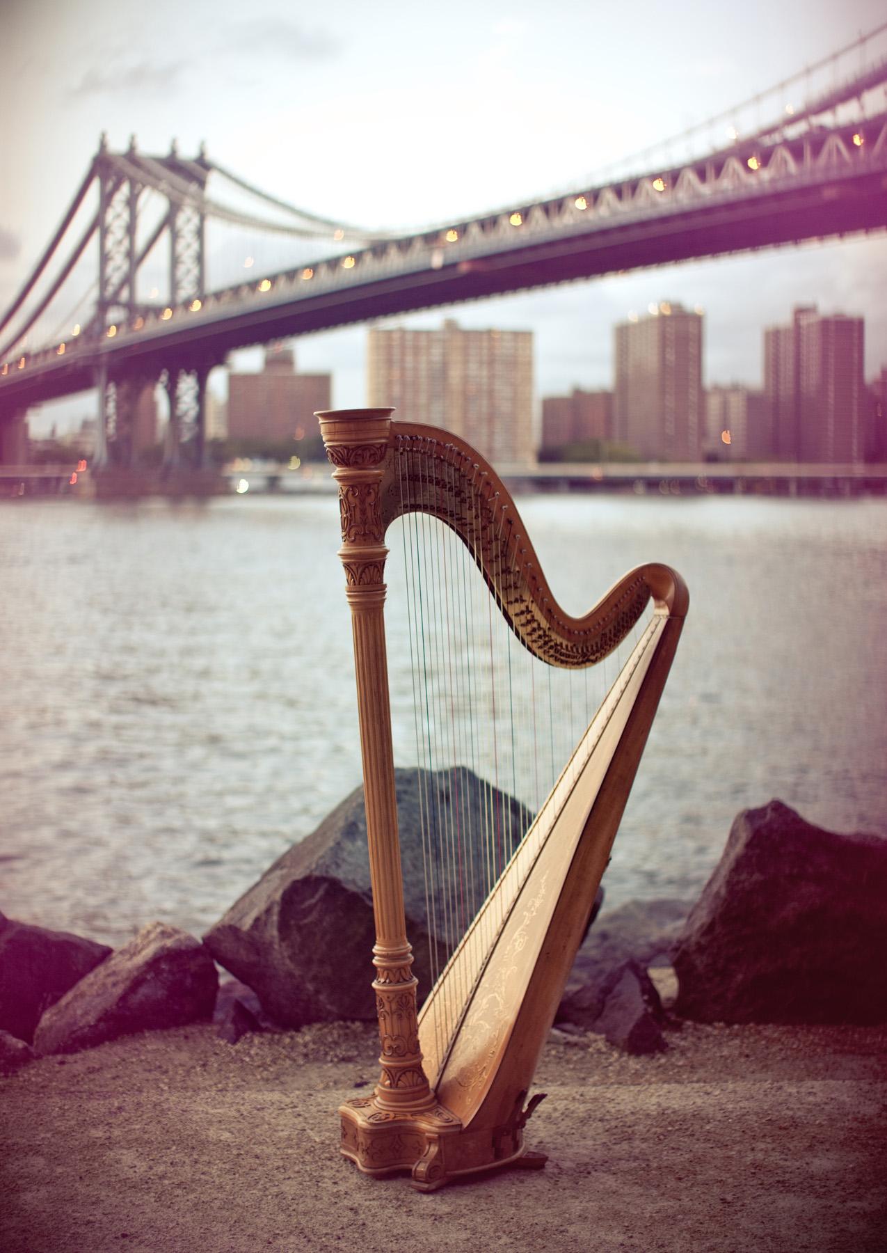 bridge harp.jpg