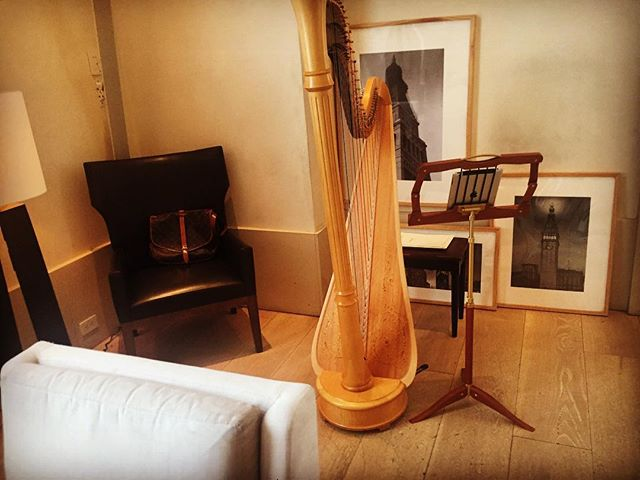 #tb to springtime, when the weather was JUST like this,  @editionhotels ❤️ . . . . . . #harp #luisvuitton #apple #lyonandhealy #madisonsquarepark #happyplace