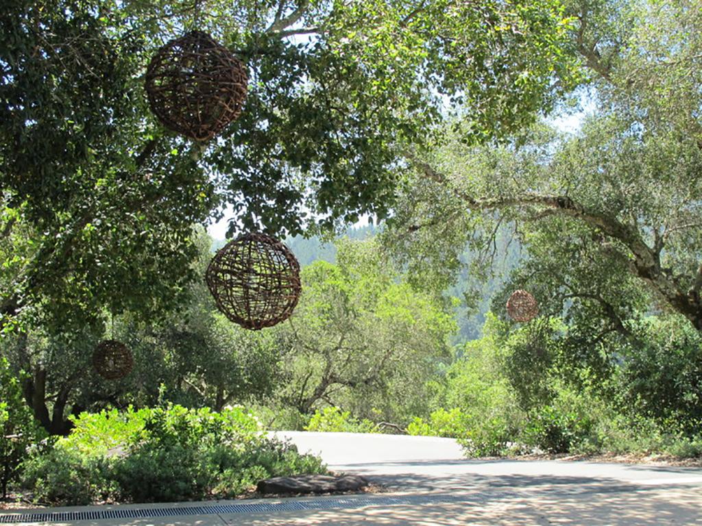 Oakville Winery Claudia Schmidt Landscape Design
