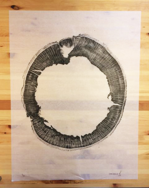 Jaws Beech  24x28in; Limited Edition /25 Beech cookie with very tight ring growth printed on Japanese Kozuke Ivory paper in black relief ink. The log was obtained from Legacy Lumber in Erin, Ontario.