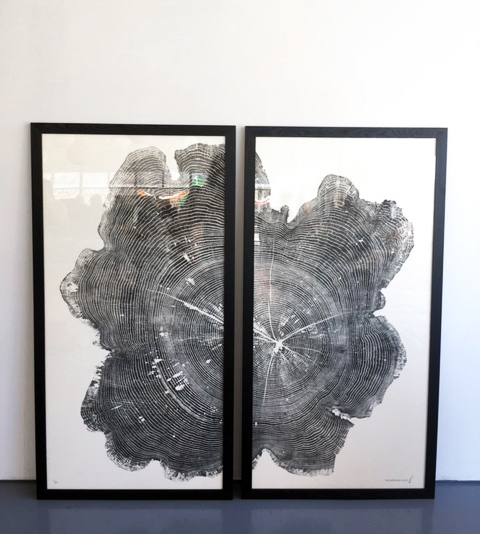 The Emerging Giant  (diptych) — each frame 30x60in; Limited Edition /20 Huge Red Oak printed on Japanese Kozuke Ivory paper in black relief ink. The log was obtained from Canadian Woodworks in Erin, Ontario. This log, I've been told was taken down by Diamond Tree Service in the GTA.