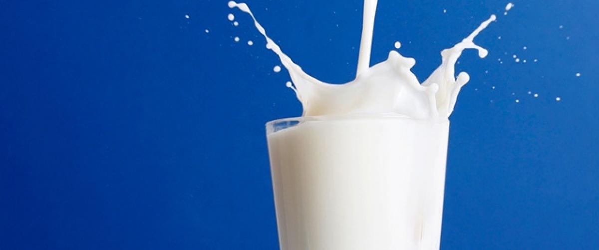 2. Milk