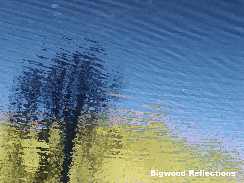 pond reflec.jpg