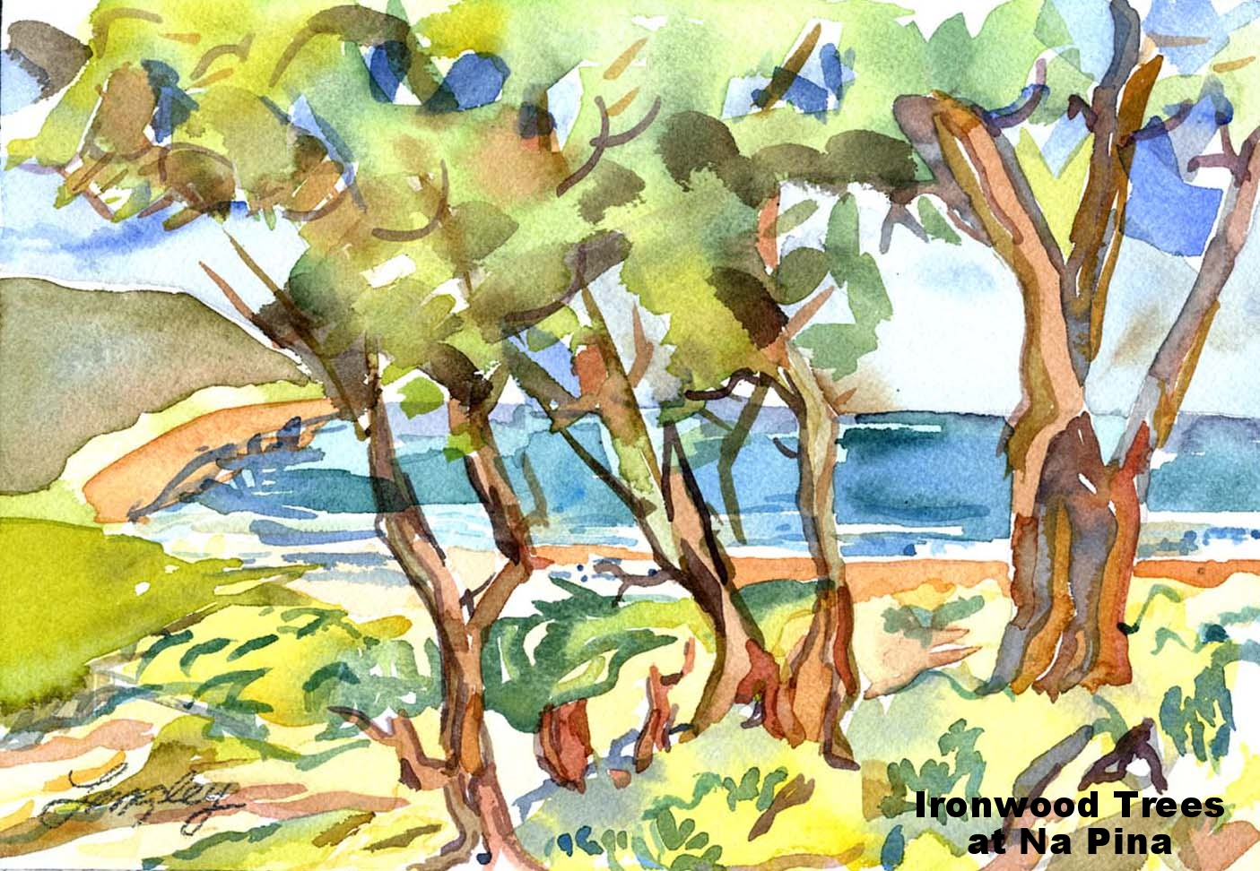 kauai-beach 8X12.jpg