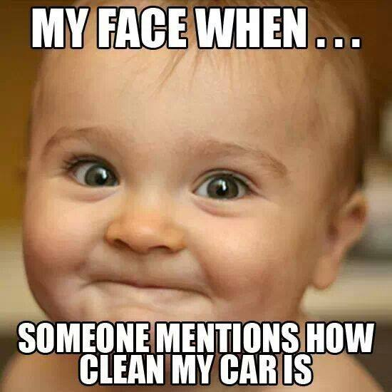 clean car reaction
