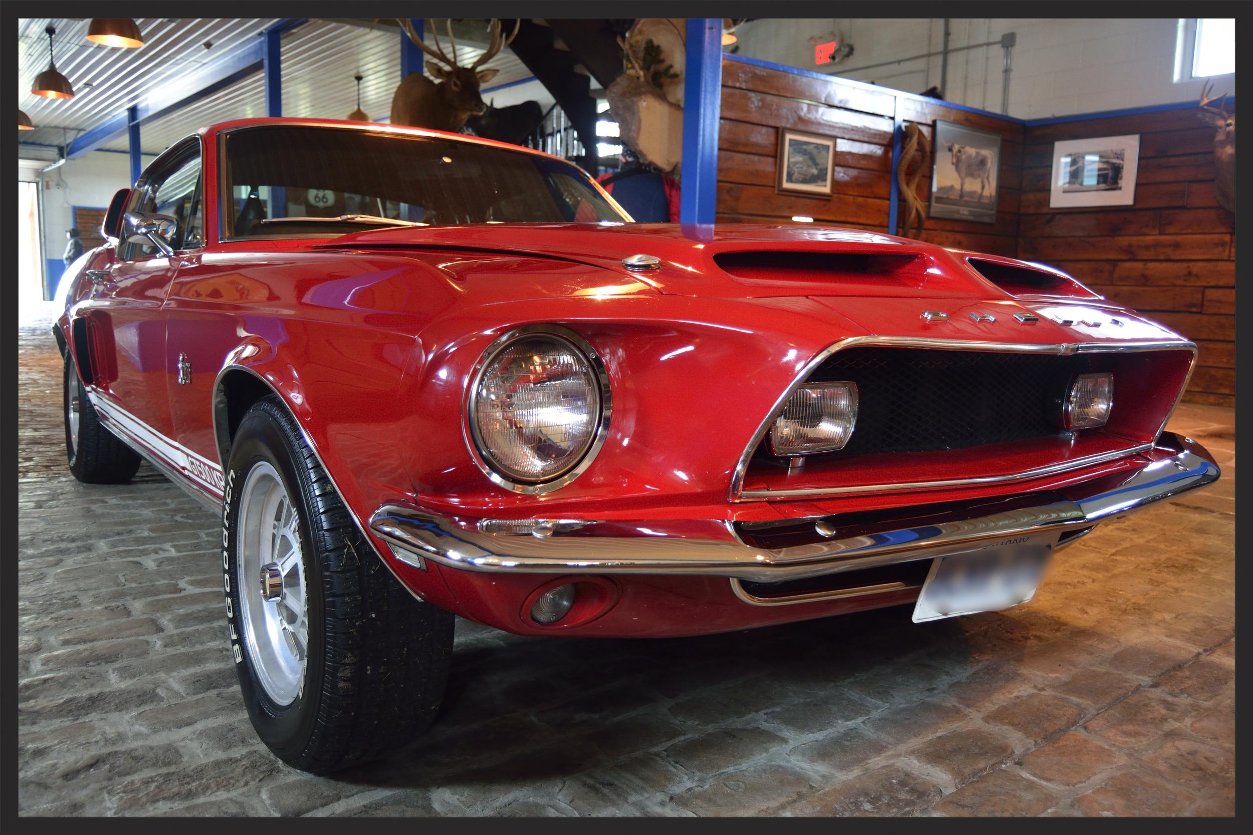 Ford Shelby Cobra GT500KR (1968)