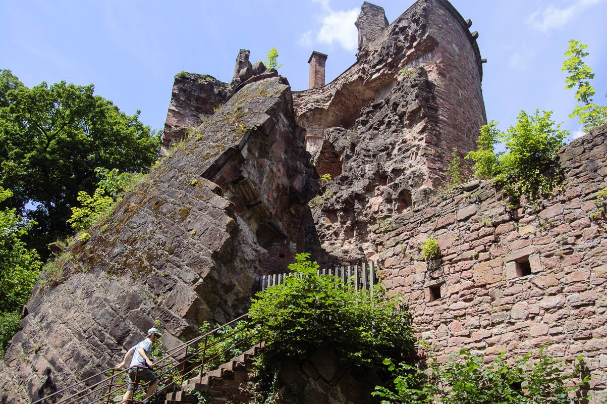 Castle Heidelberg ruins