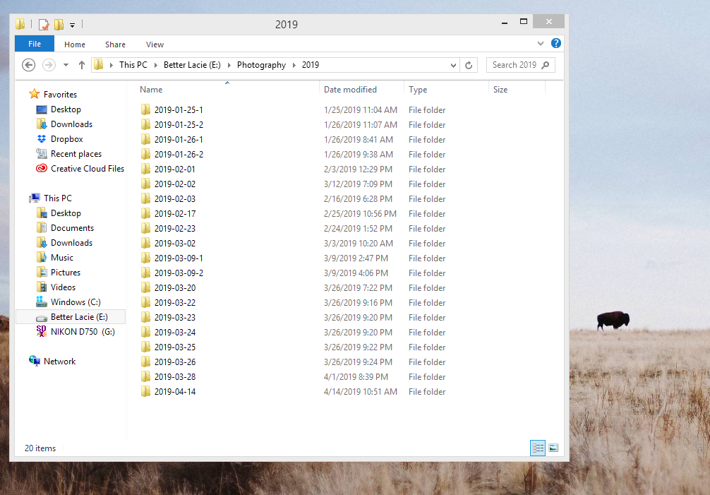 Setup your image folder by year to stay organized