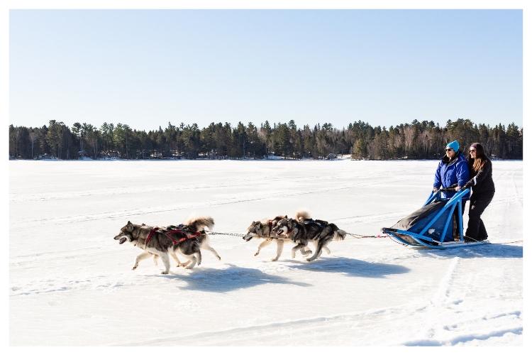 frozen boundary waters dogsledding