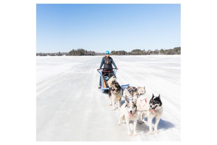 dogsledding with adventurher travel