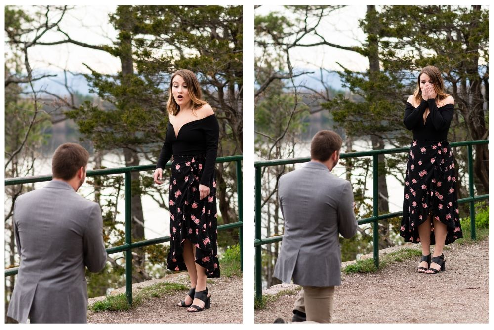 lake champlain surprise proposal
