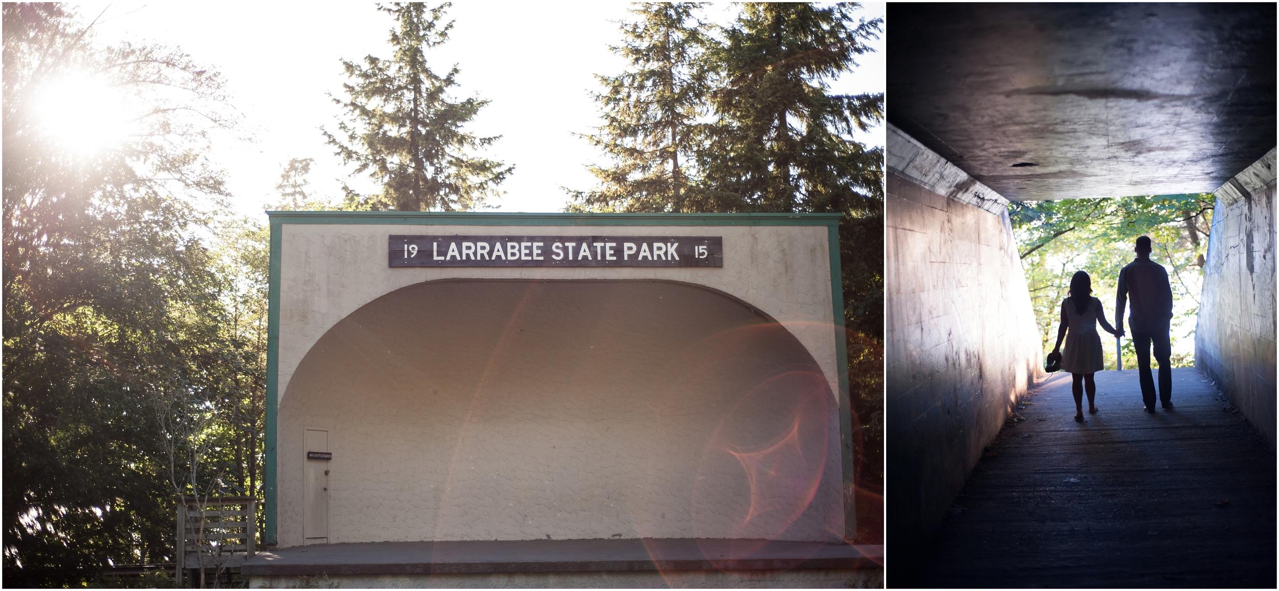 Larrabee State Park Engagement Photoshoot