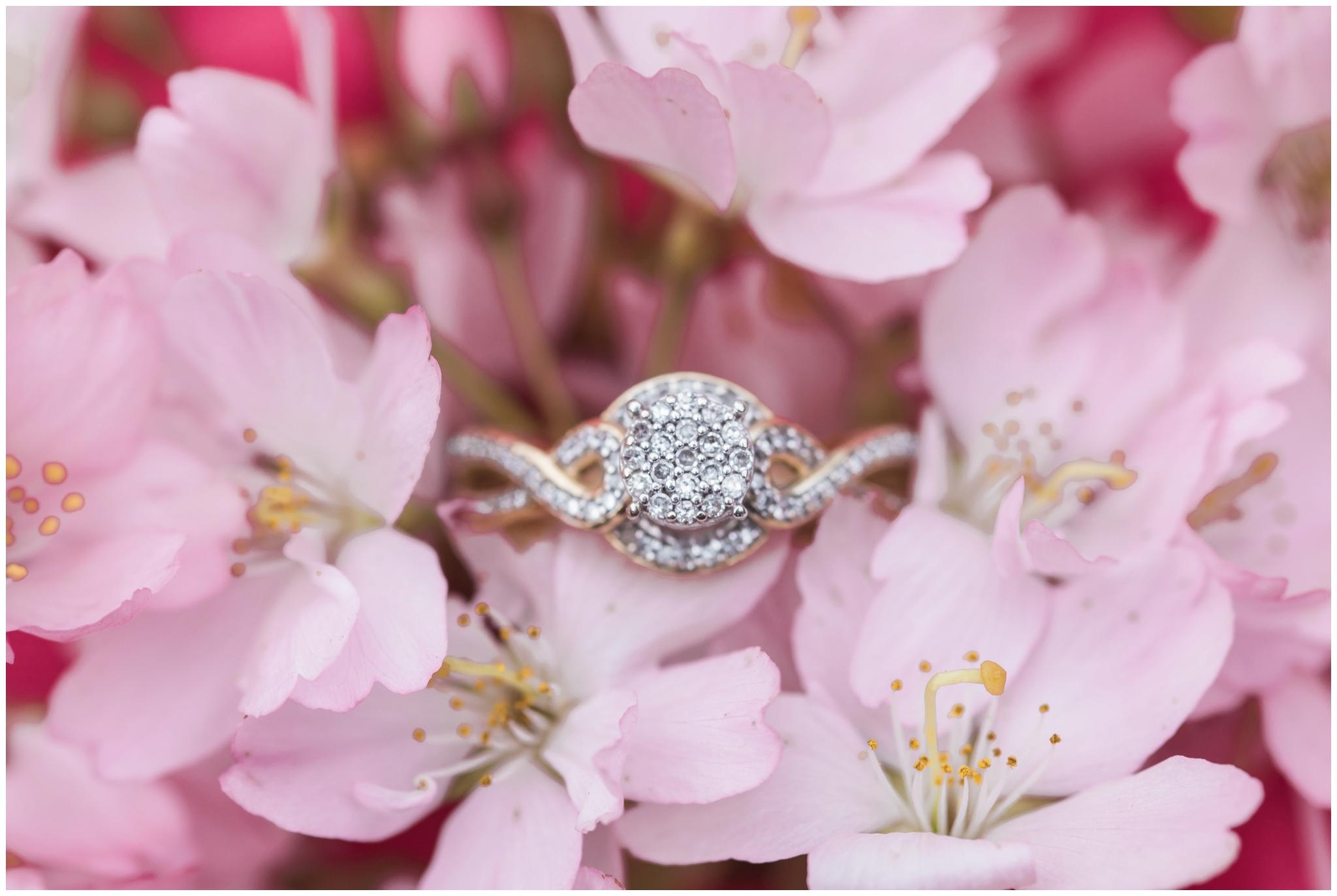 Christian & Vanessa's Bellingham Cherry Blossom engagement