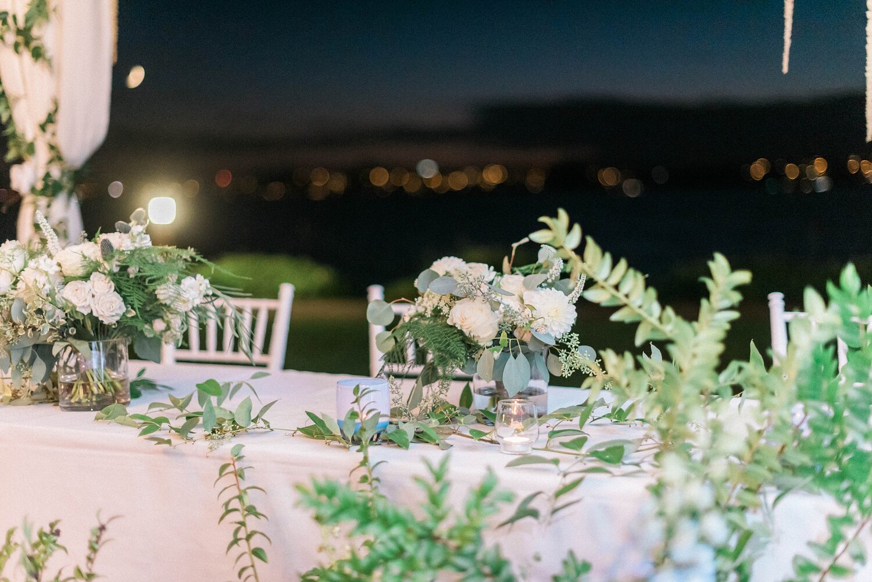 Kathleen  & Michael's Woodmark wedding dance party reception. Dj