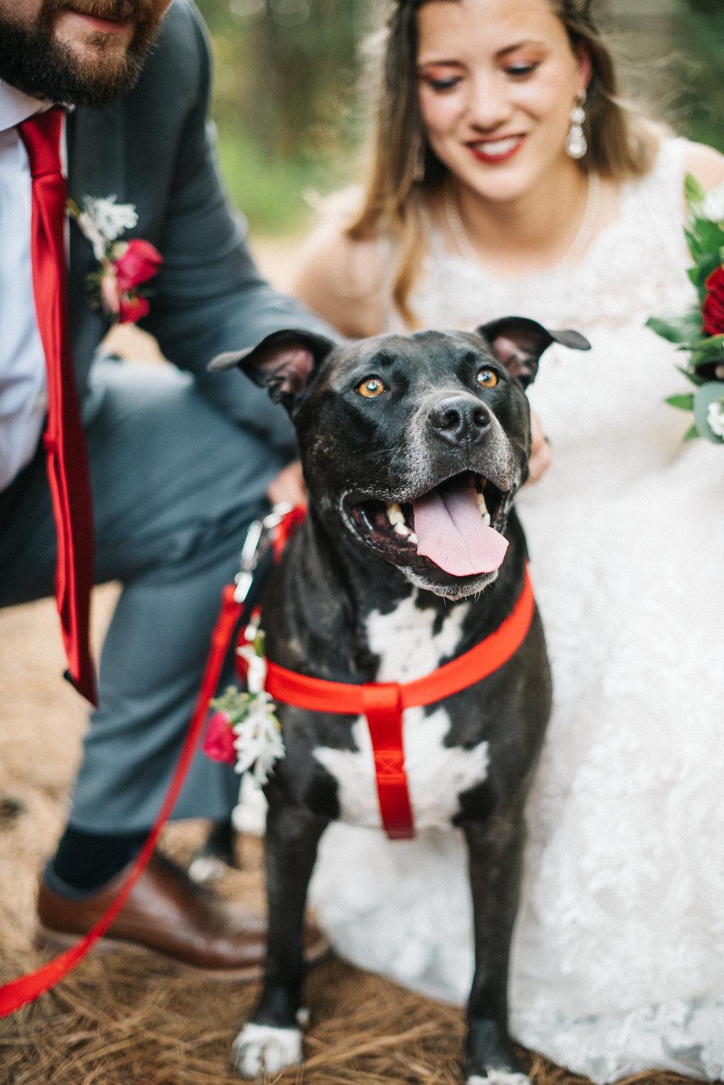 Lexi-Colby-Wedding-2726.jpg