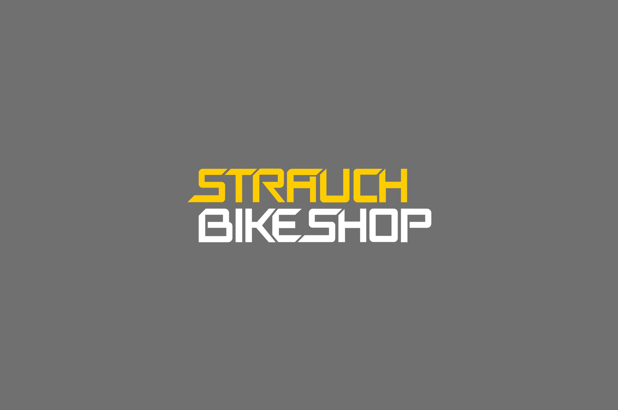 01_Strauch-Logo_neg.jpg