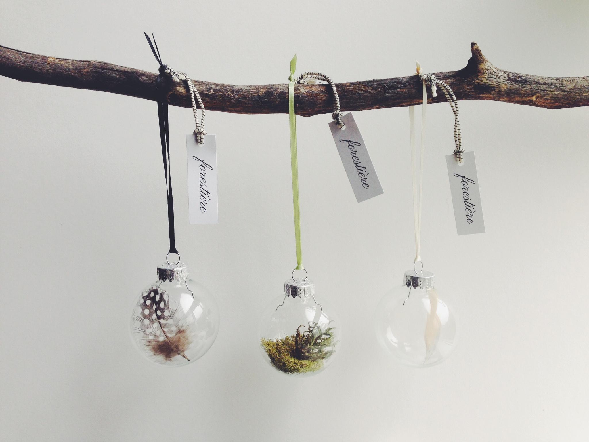 FORESTIERE - Mini Natural History Ornaments.jpg