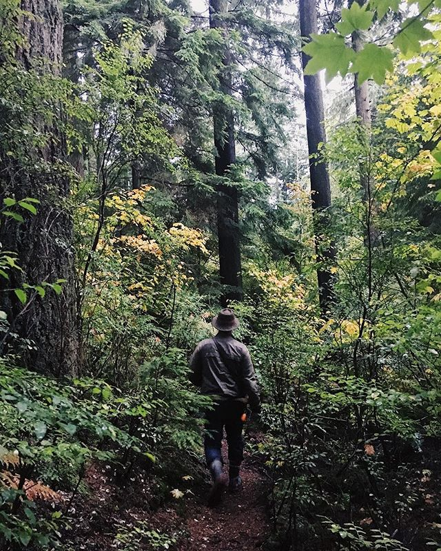 In his element. • • • • • • #outsidewoods #pnwlife #thatpnwlife #pnwonderland #greatnorthcollective #nrthwst #upknorth #explorecanada #getoutside #outside_project #theoutbound #wildernessculture #keepitwild #forgeyourownpath #wanderout #thewanderco #finditliveit #exploretocreate #verilymoment #provenciallife #thehappynow #mytinyatlas #feelfreefeed #folkgreen #livefolk #slowliving #momentslikethese #bedeeplyrooted #calmversation #livemoremagic