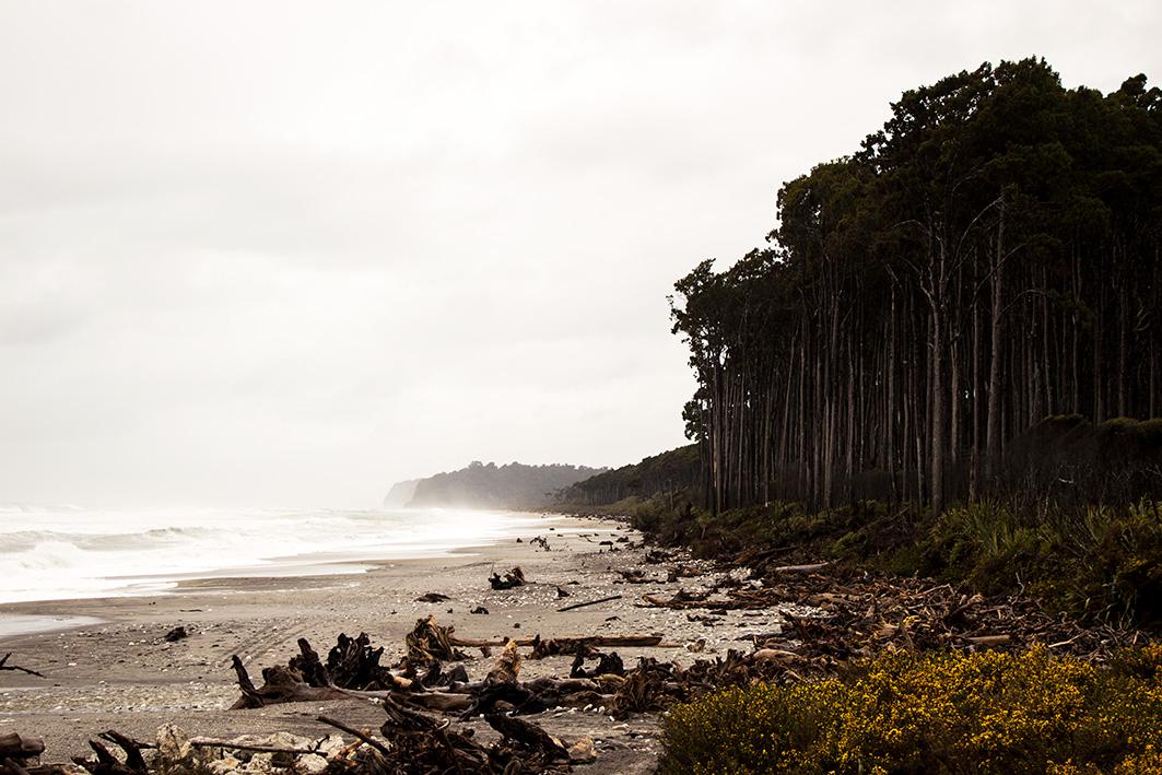Bruce Bay, West Coast 2016
