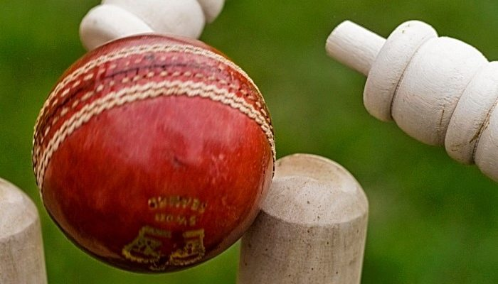 cricket-700x400.jpg