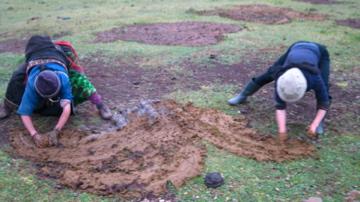 Yama and Lynn spread dung
