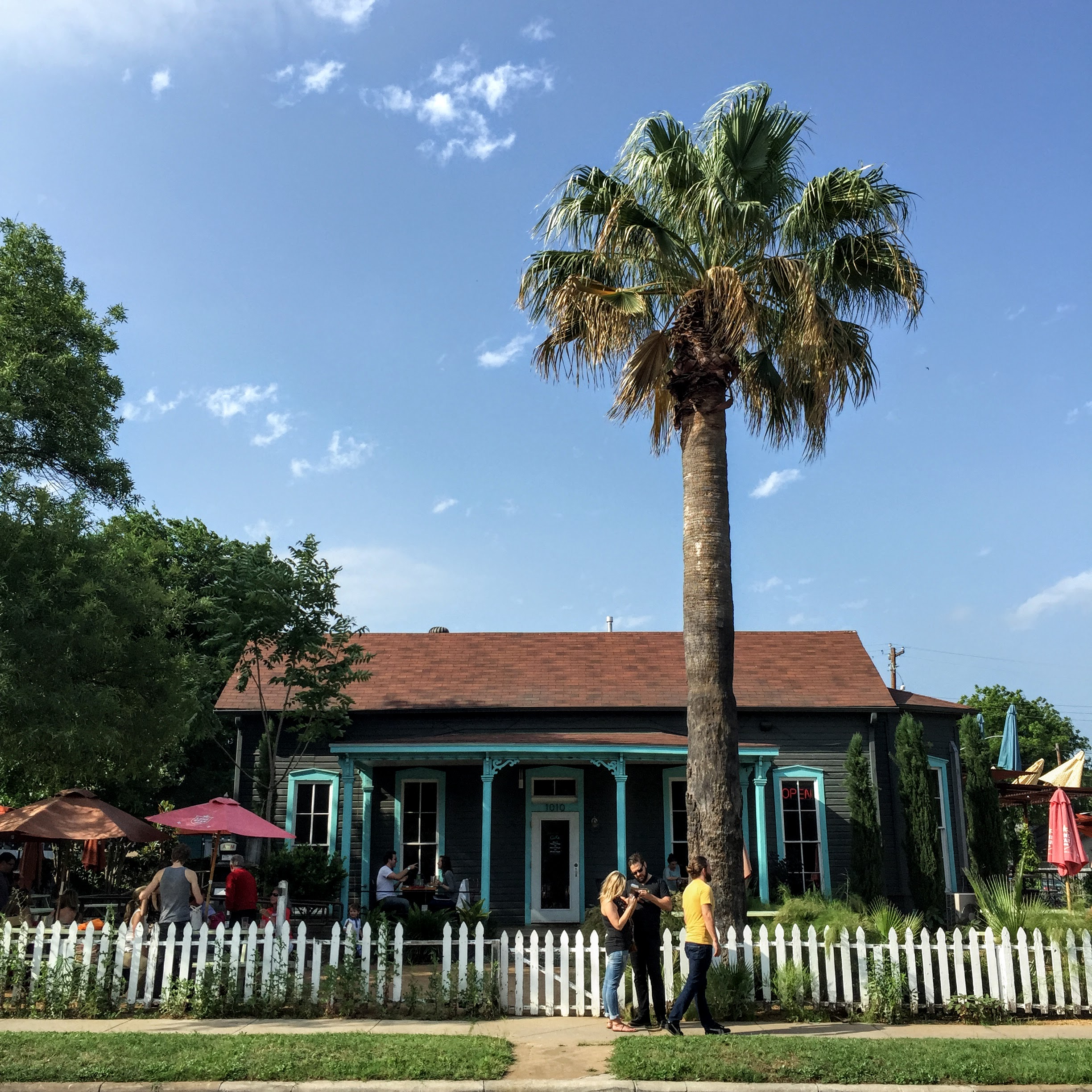 Cenote ( LINK ) - great neighborhood cafe with ample outdoor seating