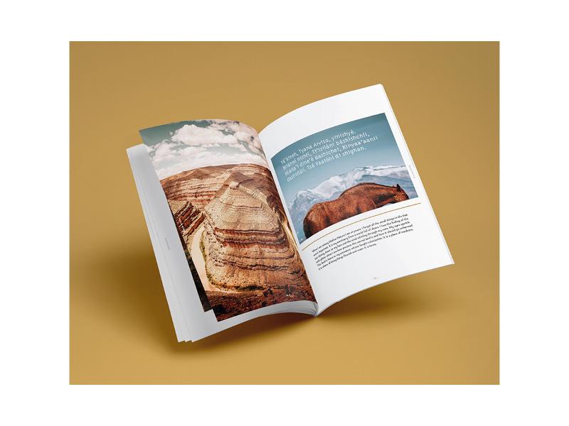 85for85_SocialPost_Book-2.jpg