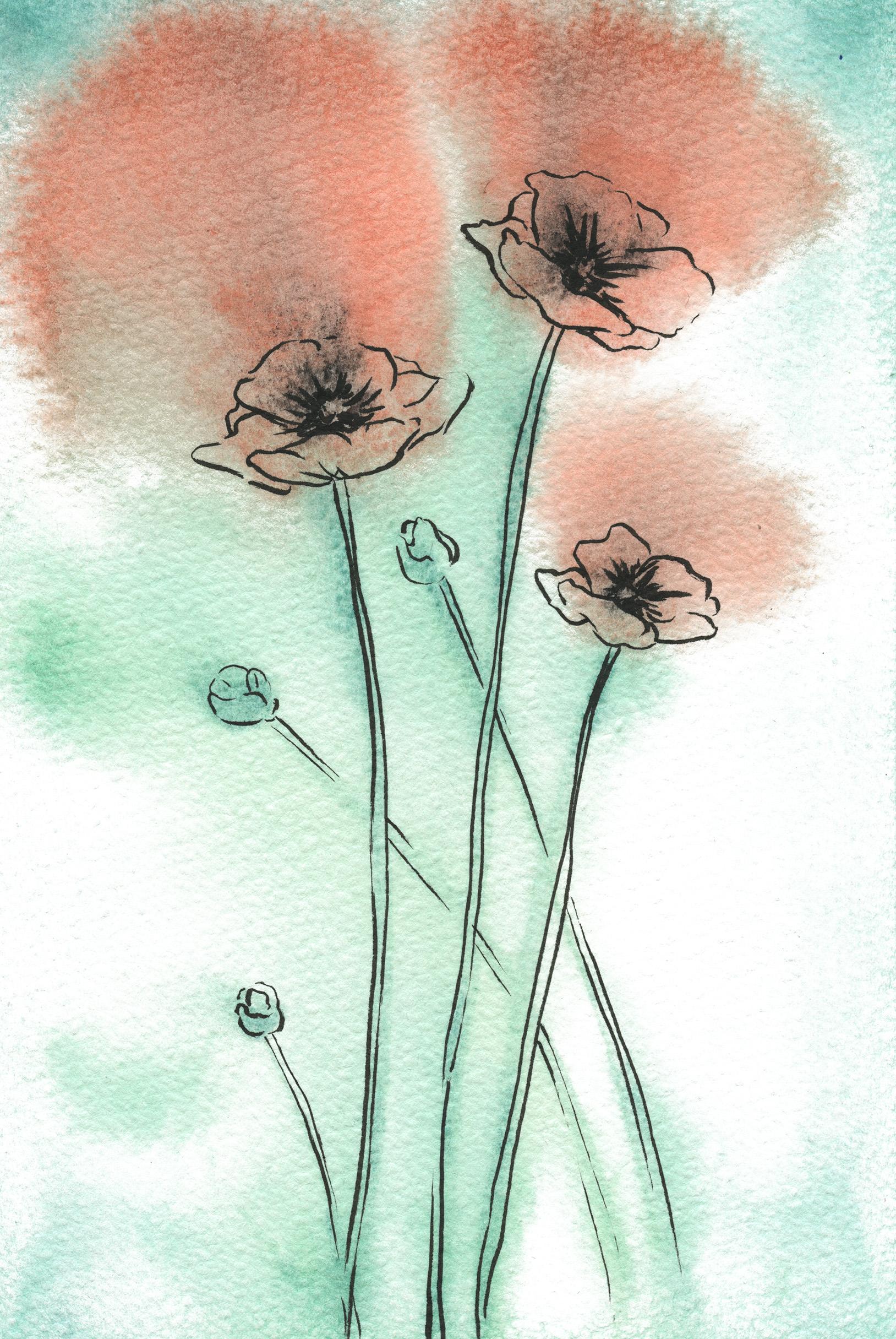 Maira Poppies002.jpg
