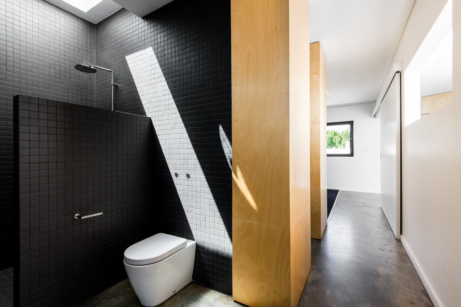 Triangle House by Robeson Architects - Black and Ply Bathroom