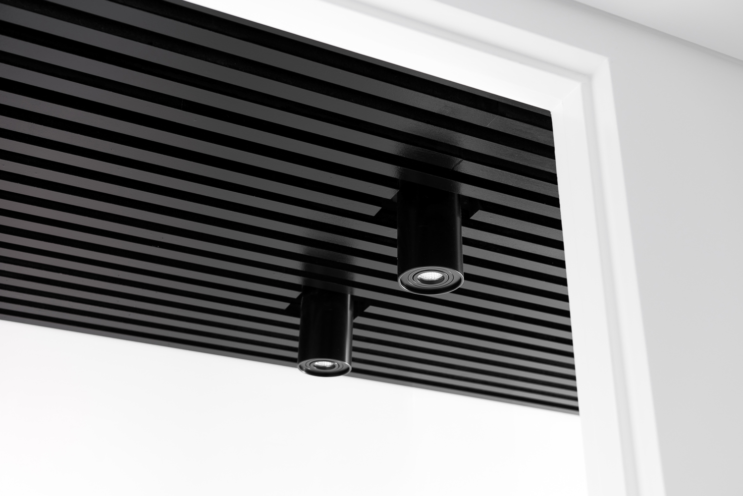 King George by Robeson Architects - Black Canister Light