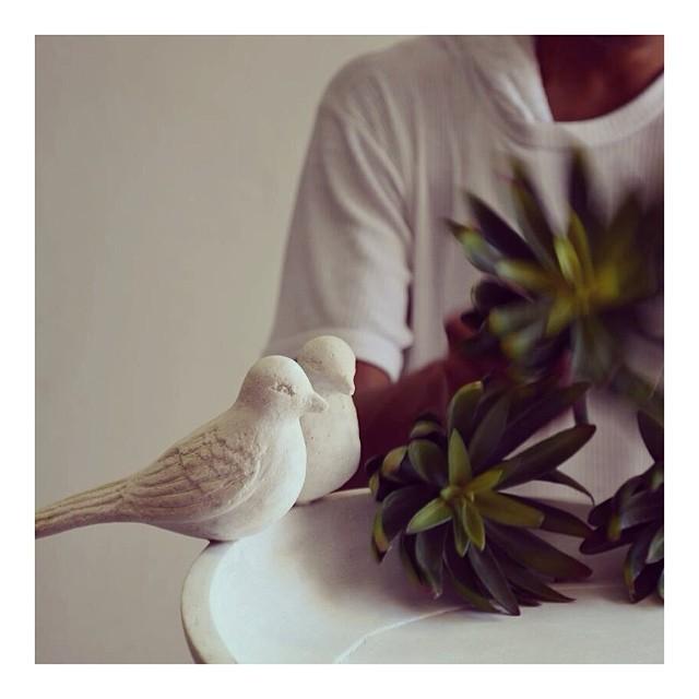 Co-Creative Studio Birdbath Blog Paula Rodriguez