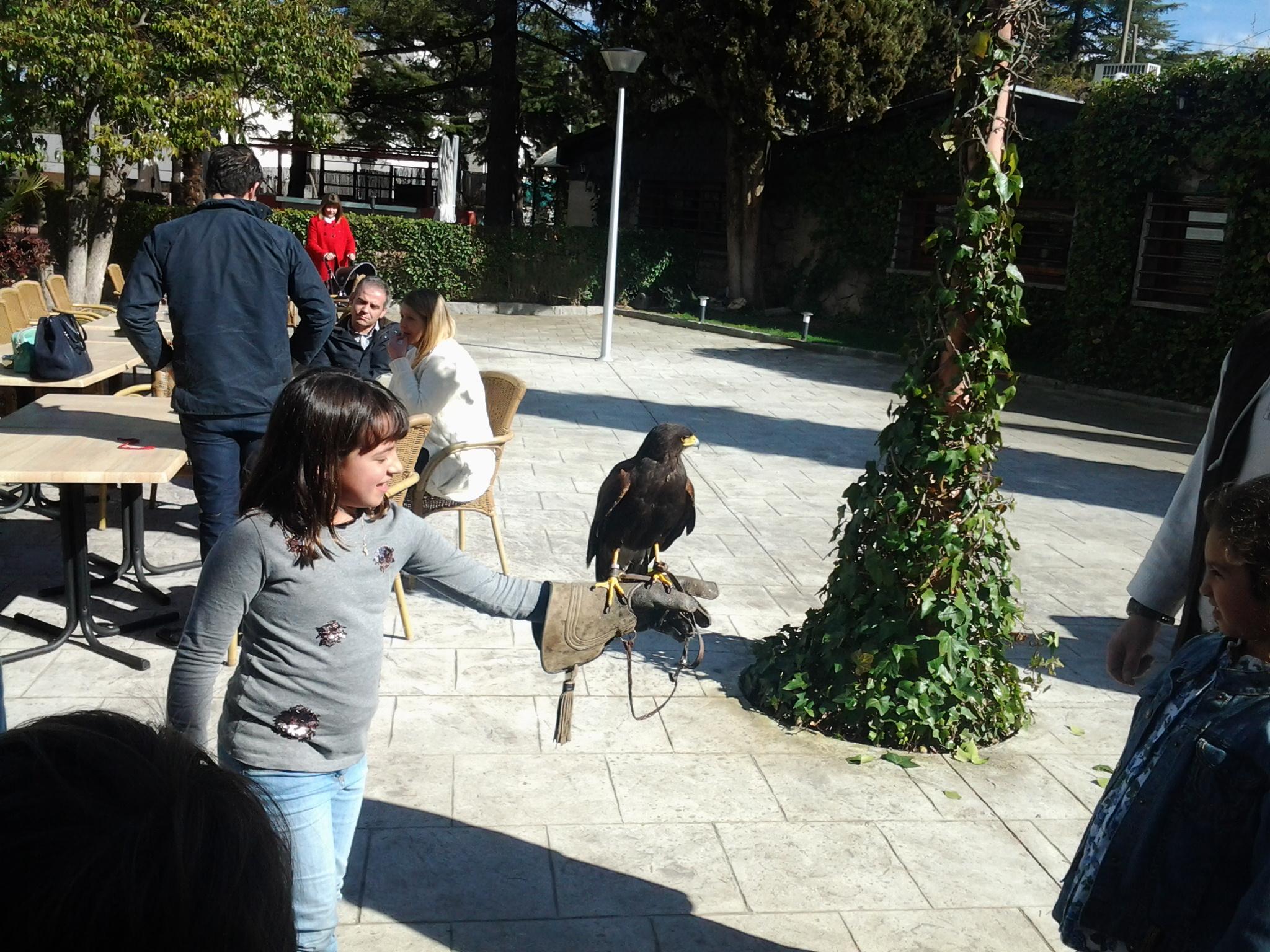 Eventos - Latigazo Restaurante - Animalia