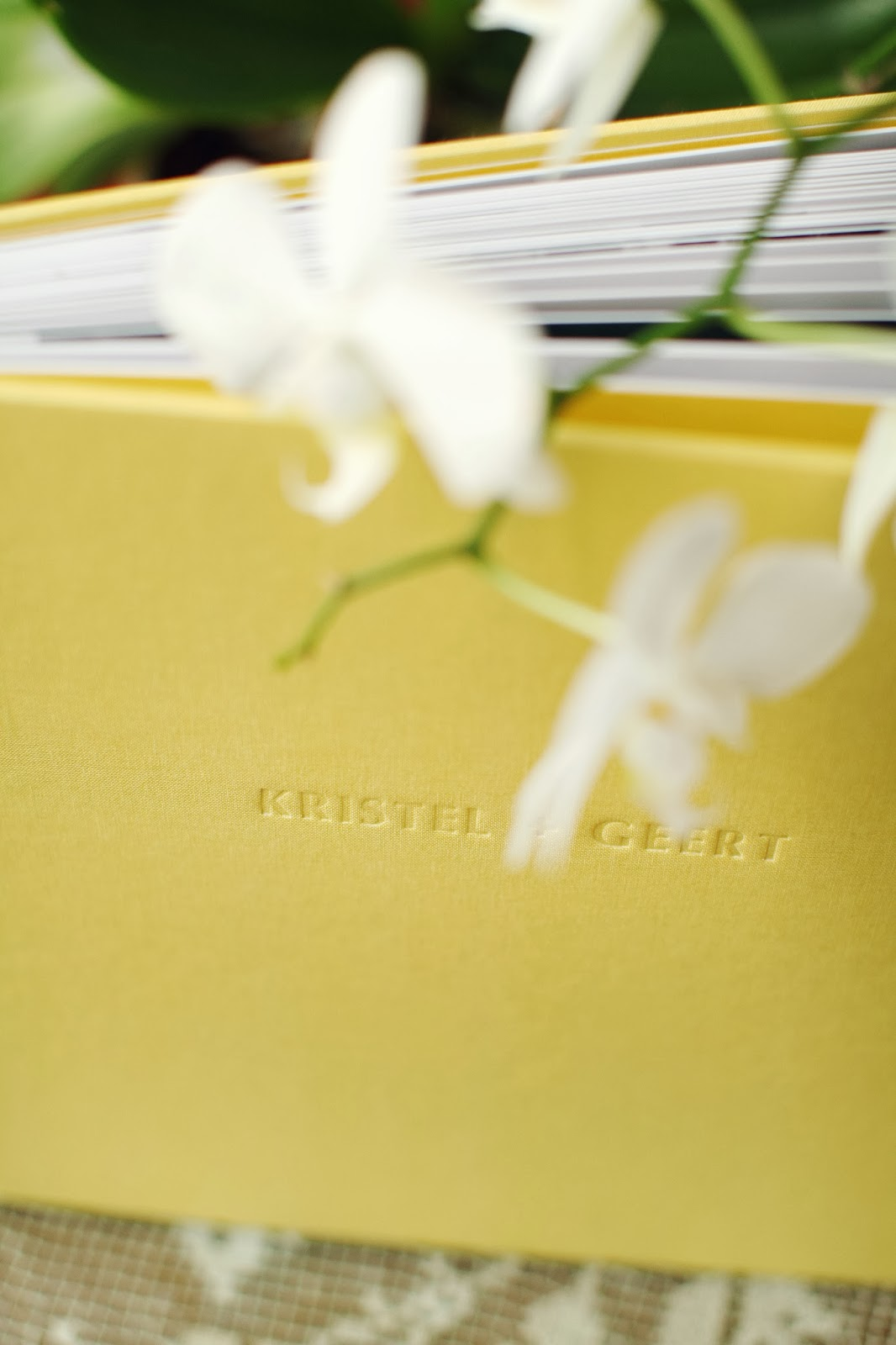 linnen+cover+detail2.jpg