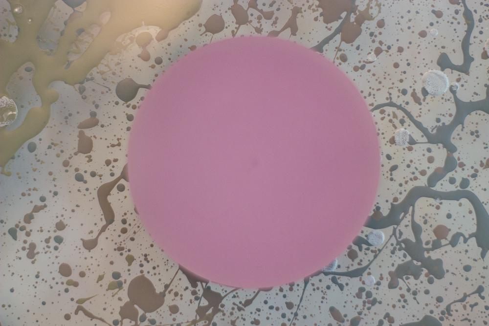 Ed Ball contemporary abstract art 9.jpg