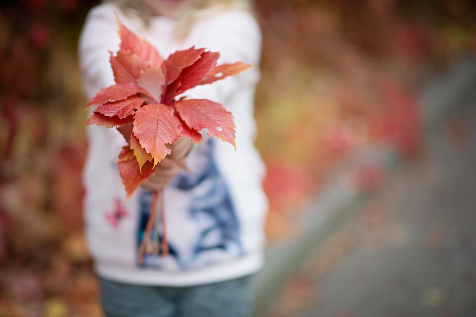kronvallspixlar_barnporträtt_11.jpg