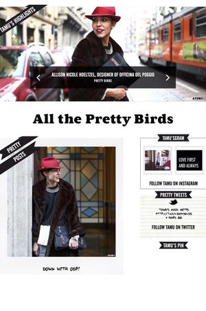 Tamu McPherson interviews Allison on blog  ALL THE PRETTY BIRDS