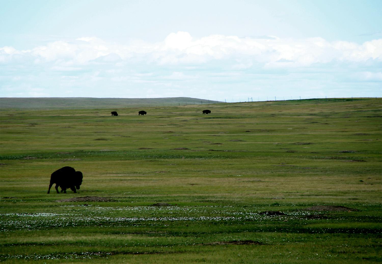 // Badlands National Park, South Dakota