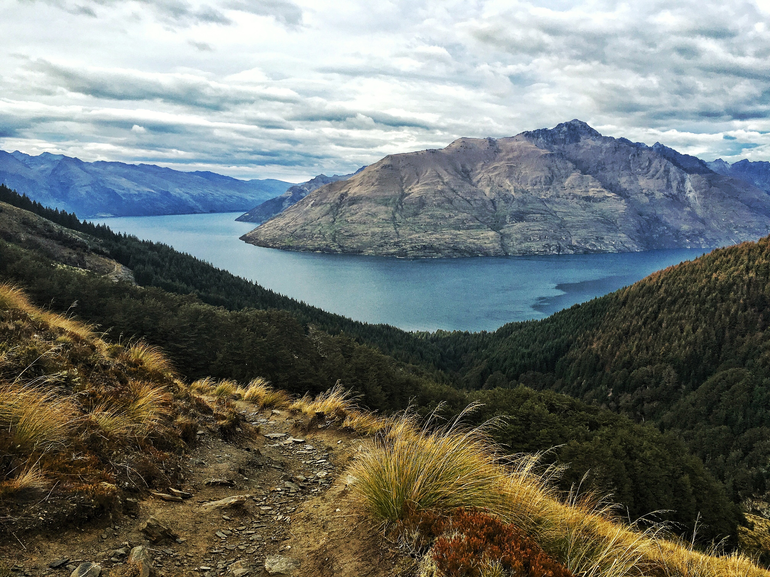 //  Between the tree line and the Saddle, looking South to Lake Wakatipu and Cecil Peak