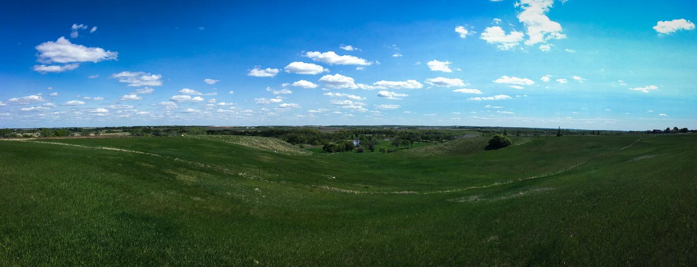 // North Dakota was either Grassland or Farmland