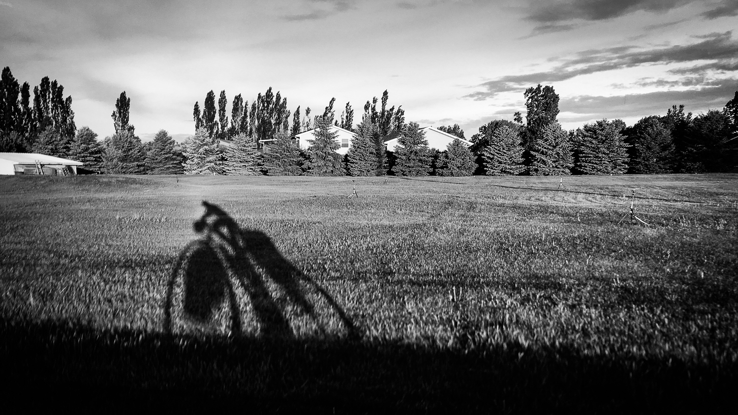 // Morning Cycling Shadow