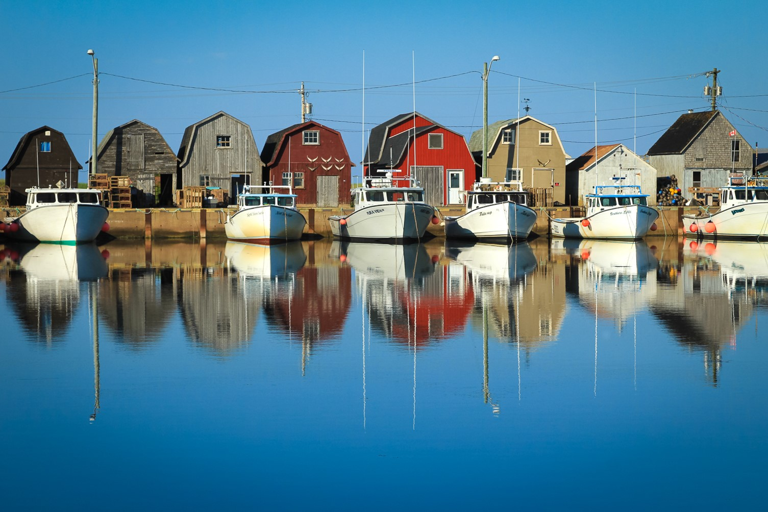 malpeque harbour PEI