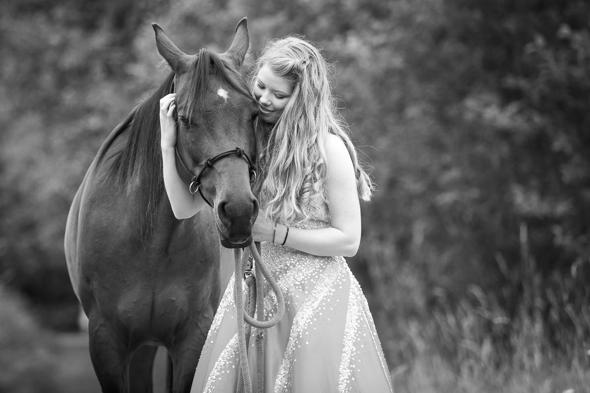 comox photographer horse
