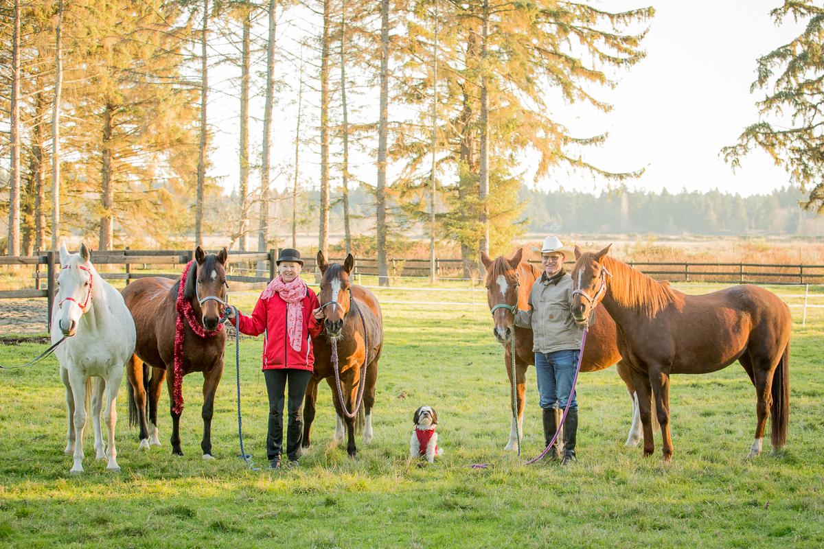 horses courtenay.jpg