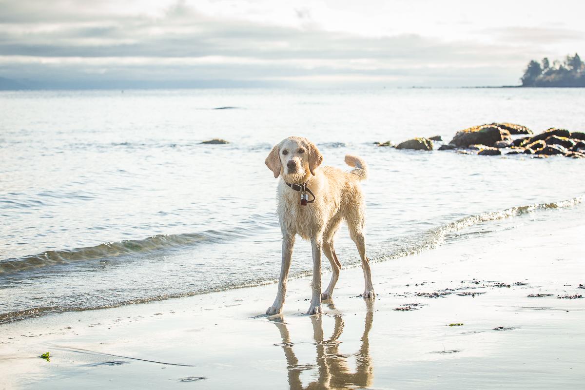 Josie learned to swim here last week!